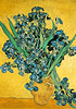Van Gogh iris painting