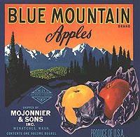 Blue Mountain Oranges