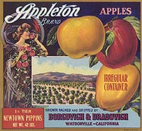Appleton Apples