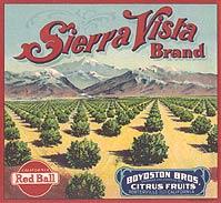 Sierra Vista Oranges